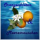 Cover: Orangenblüten und Meeresrauschen