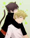Cover: Durarara- Neko und Kitsune geht das gut
