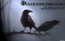 Cover: Rabenschwinge