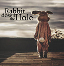 Cover: Rabbit down the Hole
