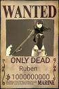 Cover: Rubis's Leben