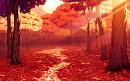 Cover: Fallende Blätter