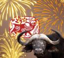 Cover: Das Jahr des Büffels