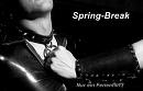Cover: Spring-Break