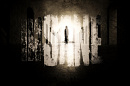 Cover: Insane