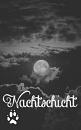 Cover: Nachtschicht