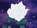 Cover: Lady Oscar - Eine Rose für die Ewigkeit