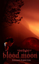 Cover: Blood Moon - Bis(s) in alle Ewigkeit