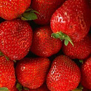 Cover: Strawberries and other sweet Things