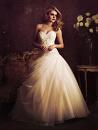 Cover: Das Hochzeitskleid