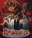 Cover: Black Cat & Chrome Breaker