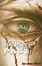 Cover: Scars from Past
