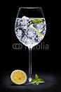 Cover: Gin Tonic