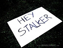 Cover: Stalker..