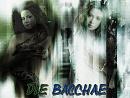 Cover: Die  Bacchae