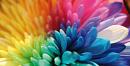 Cover: Farben