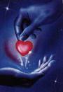 Cover: Stehle mein Herz