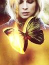 Cover: Schmetterlingsdroge