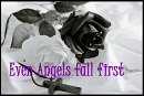 Cover: Even angels fall first