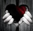 Cover: Zwischen Freundschaft... und Liebe?