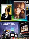 Cover: Homebird |