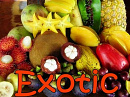 Cover: Exotic
