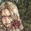Cover: Ein Kleid aus Rosen