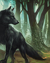 Cover: Wolfs-Junge