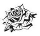 Cover: Sherlock Rose