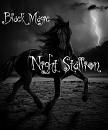 Cover: Black Magic: Night Stallion