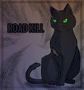 Cover: _- Road Kill -_