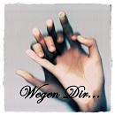 Cover: Wegen Dir...