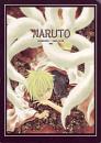 Cover: Naruto
