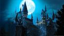 Cover: Harry Potter und die Schüler Merlins