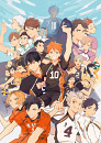 Cover: Tim out four Karasuno