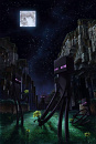 Cover: Follow the Enderman