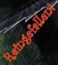 Cover: Reingefallen!