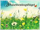 Cover: Schmetterlingsflügel