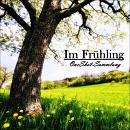 Cover: Im Frühling - OS-Sammlung