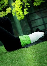 Cosplay-Cover: Roronoa Zoro (Thriller Bark)