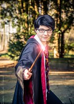 """Cosplay-Cover: James """"Krone"""" Potter"""