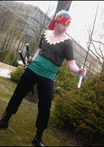 Cosplay-Cover: Zoro (Strong World)