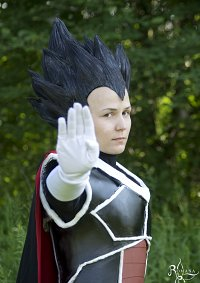 Cosplay-Cover: Vegeta (DBM)