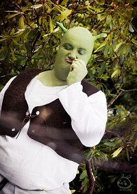 Cosplay-Cover: Shrek