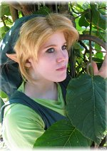 Cosplay-Cover: Link  Wind Waker