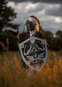 Cosplay-Cover: Dark Link