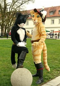 Cosplay-Cover: Kater