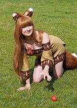 Cosplay-Cover: Horo- braunes Kleid