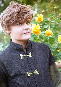 Cosplay-Cover: Loras Tyrell
