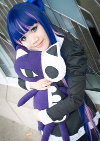 Cosplay-Cover: Anarchy Stocking - Basic